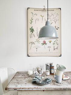 Une salle à manger vintage, entre table rustique, suspension en métal pastel et planche de botanique