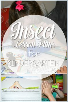 Insect lesson plans for kindergarten are here!  Last week I was able to work with a kindergarten classroom as we immersed ourselves in all things insects!
