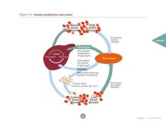 App para iPad sobre diabetes | Diagnostrum