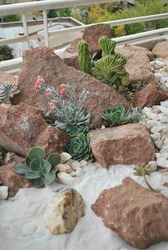 Ideas para decorar un jard n seco con piedras y cactus - Jardines con cactus y piedras ...