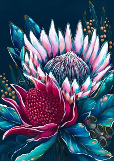 Protea Art, Protea Flower, Stretched Canvas Prints, Canvas Art Prints, Framed Prints, Folk Art Flowers, Flower Art, Australian Native Flowers, Original Paintings
