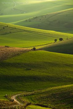 The South Downs - East Sussex - England. Wouldn't mind swapping the office for a bit of English countryside right now!