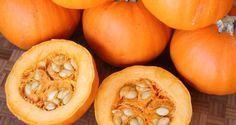Top 10 Incredible Health Benefits of Pumpkin http://www.healthdigezt.com/top-10-incredible-health-benefits-of-pumpkin/  #healthdigezt #health #diet #beauty #nutrition #exercise #food #new #homeremedies #wellness #fitness   Follow us on  Twitter: https://twitter.com/HealthDigezt Instagram: http://instagram.com/healthdigezt Google Plus: google.com/+Healthdigezt Youtube: https://www.youtube.com/user/healthdigeZt Facebook: https://www.facebook.com/healthdigest