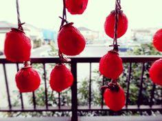 ◇干し柿◇