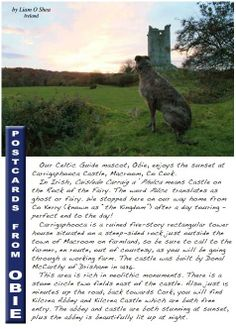 """Obie the Scottish Deerhound lives in Ireland. He sends up """"postcards"""" about his travels each month to our magazine. This one is from our March 2014 issue. Read all issues for free at www.CelticGuide.com"""