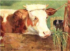 NOVILHO - OST-65x85-1889-COLEÇÃO PARTICULAR