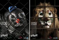 Some Powerful Animal Ad Campaigns - Imgur