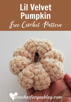 Crochet Lil Velvet Pumpkin Free Pattern - Crochet For You Crochet Fall, Halloween Crochet, Crochet Home, Crochet Gifts, Cute Crochet, Easy Crochet, Thanksgiving Crochet, Crochet Stars, Crochet Christmas