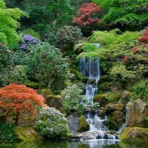 Portland Japanese Garden - Pixdaus