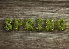 How to Create a Grass-Covered Spring Text Effect in Adobe Photoshop