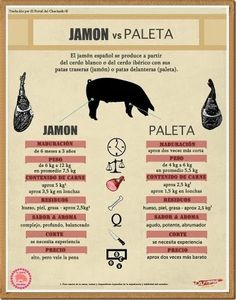 Cortador de jamon en Sevilla. (Francisco): Manual