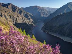 """A cordilheira de Altai, considerada por alguns como a """"Farmácia Verde"""" da Terra, é uma das regiões mais limpas – menos poluídas – da Rússia."""