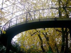 Explore marcos stafne's photos on Flickr. marcos stafne has uploaded 12531 photos to Flickr.
