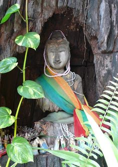 ✮ Buddha carved from a hollowed tree at a Kuan Im temple in Bangkok, Thailand