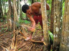Reserva Extrativista (Foto: Divulgação / ICMBio) - Resex Marinha Prainha do Canto Verde, pescadores de lagosta em Ceara