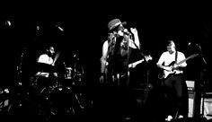 Madeline Fuhrman Orange Juice, Biscuits, Singer, World, Concert, Crack Crackers, Cookies, Singers, Biscuit
