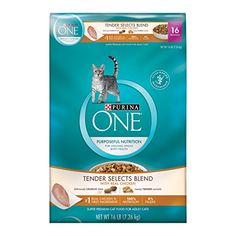 Purina ONE Tender Selects Dry Cat Food Real Chicken  Turkey Flavor 16Pound Bag Pack of 1 ** To view further for this item, visit the image link.