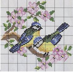 Bluebirds graph pattern