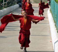 師走 / Running Monks...  Young Tibetan Monk