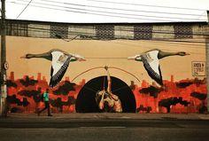 Priscila Amoni + Eduardo Fonseca are the artists
