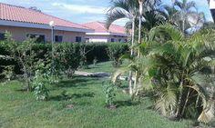MPaniagua bienes raices: 0100061 Condomino, Playa Potrero, Guanacaste, Cost...