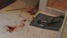 The bloody floor inside the bathroom where Steenkamp was shot.A camera shot of the Gun used in the crime.