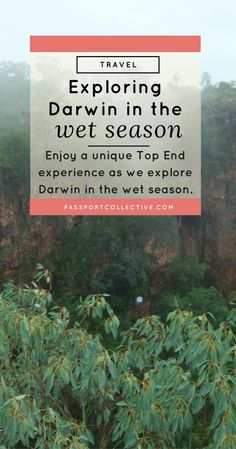 Enjoy a unique Top End experience as we explore Darwin in the wet season.