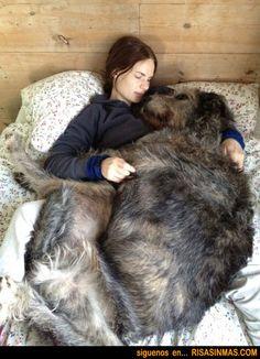 Las siempre lindas amamos y somos responsables con nuestras mascotas, porque son parte de nuestra familia <3 http://www.siempre-lindas.cl/