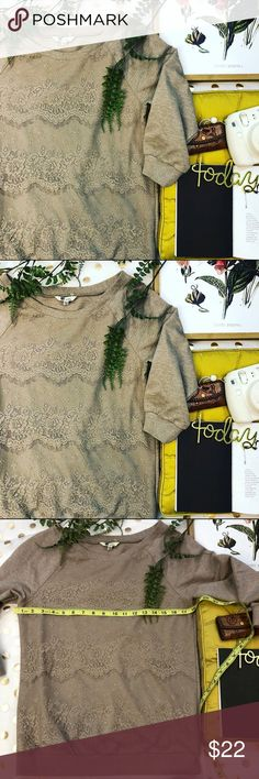 Kut from the Cloth brown lace sweater size small Kut from the cloth brown lace sweater size small  In great condition Some stretch very soft and comfy  Perfect for late summer nights and first spring days  A perfect transition piece from winter !  Any ? Please ask  I would love to accept your offer ✨💛 Kut from the Kloth Sweaters Crew & Scoop Necks
