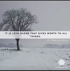 It is love alone that gives worth to all things. St Teresa of Avila