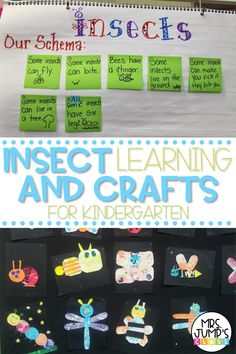 Trying to find some fun spring activities for your classroom? Why not learn all about insects! Students love learning about bugs and creating bug crafts to go along with their favorite Eric Carl books. The insect ideas I included in this post are perfect for kindergarten and 1st grade.