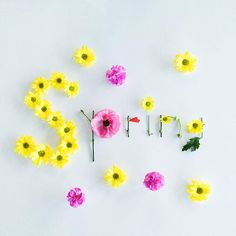noun / the season after winter & before summer verb / move or jump rapidly upwards or forwards Happy Spring, Hello Spring, Spring Time, Spring Is Here, Frühling Wallpaper, Easter Wallpaper, Flower Words, Flower Quotes, Bunch Of Flowers