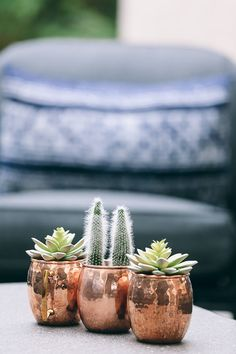 If you adore succulents and love having them around the home, consider planting one in a copper mug for your next DIY project. In this post, we reveal the complete guide to making a succulent mug planter. Read on! Rose Gold Rooms, Rose Gold Decor, Gold Bedroom, Bedroom Decor, Modern Bedroom, Cactus, Copper Planters, Deco Rose, Copper Mugs