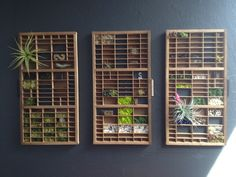 She scored the vintage printing press drawers at a flea market. After filling each one with plants and other objects, she created a triptych on the wall.