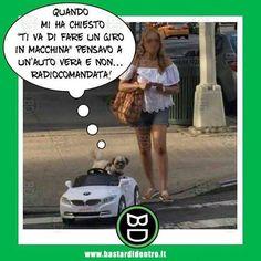 povero #cane #bastardidentro www.bastardidentro.it