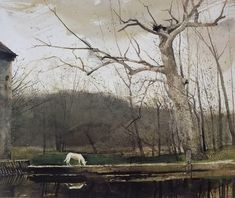 Path and Puddle — suonko: by Andrew Wyeth