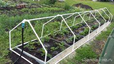 Veg Garden, Vegetable Garden Design, Garden Paths, Garden Beds, Garden Tools, Garden Watering System, Tropical Greenhouses, Garden Sprinklers, Greenhouse Plans