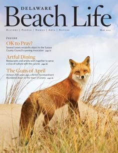Delaware Beach Life magazine always has such beautiful covers! (most by amazing photographer Kevin Fleming)