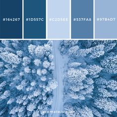 Aerial Photography of Trees Color Palette Blue Things blue color palette Paint Colors For Home, House Colors, Room Colors, Blue Colour Palette, Blue Color Schemes, Color Blue, Blue Color Combinations, Periwinkle Color, Couleur Hexadecimal
