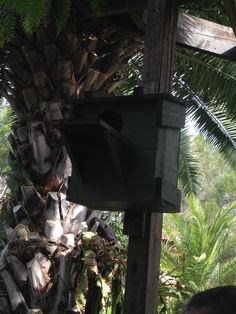 Possum box to keep them out of your roof