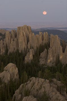 The Needles protrude from forests in Custer State Park - South Dakota