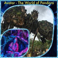 Review of Pandora - The World of Avatar / Walt Disney World Resort - Florida.