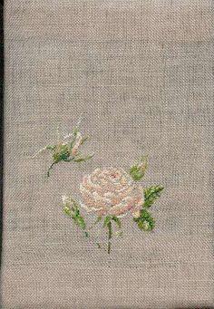 Rose de Redouté -