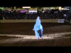 ▶ American Quarter Horse Congress 2014 Freestyle #8 Frozen: Let It Go - YouTube. Stunning performance!
