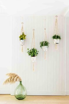green-plants-sep-16