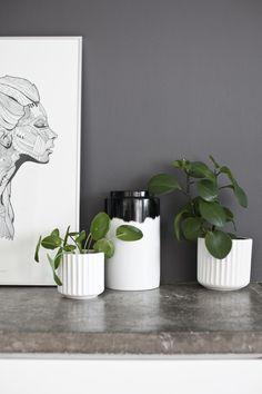 LindaElmin_6954 Decor, Home Decor, Vase, Kitchen