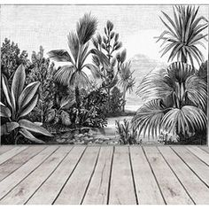 Black and White Jungle Wallpaper Rainforest, Landscape Wall Mural Removable Wallpaper Tropical, Self Adhesive Wallpaper Peel and Stick Old Wallpaper, Self Adhesive Wallpaper, Peel And Stick Wallpaper, Jungle Wallpaper, Beautiful Wallpaper, Jungle Gardens, Washable Paint, Focal Wall, Landscape Walls