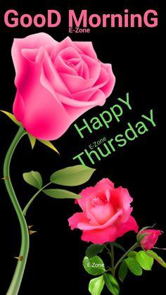 Good Morning Happy Thursday, Cute Good Morning, Good Morning Flowers, Good Morning Image Quotes, Morning Quotes, Morning Inspiration, Stairway