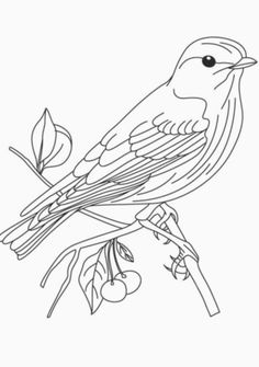 Blue Bird Cartoon – AZ Coloring Pages Make your world more colorful with free printable coloring pages from italks. Our free coloring pages for adults and kids. Bird Coloring Pages, Cartoon Coloring Pages, Free Printable Coloring Pages, Adult Coloring Pages, Coloring Books, Free Printables, Pattern Coloring Pages, Printable Crafts, Coloring Sheets