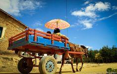 Carroça - Registrado por Meirelles na área rural da comunidade de Ipubi-PE durante o Plano de Trabalho de Desenvolvimento Sustentável aplicado pela equipe da UFSCar no Projeto Rondon - Operação Rei do Baião 2010.
